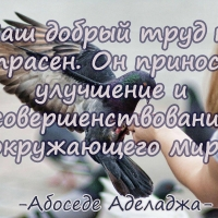 Bose Dere-Adelaja